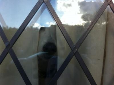 Chelsea Window